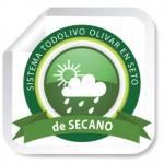 OlivarenSeto_Secano