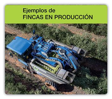 Ejemplos_Fincas_de_Producción