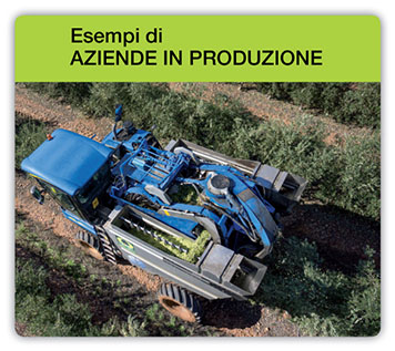 Ejemplos_Fincas_de_Produccion_it