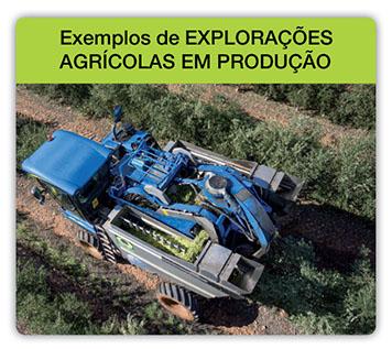 Ejemplos_Fincas_de_Produccion_pt