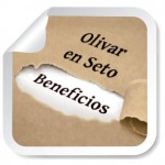 OlivarenSeto_PrincipalesBeneficios