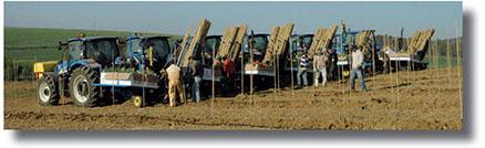 Todolivo_ejecucionintegral_tractores2