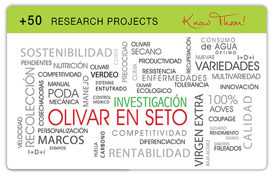 Todolivo_research-projects