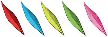olivar-seto-secano-img07_1
